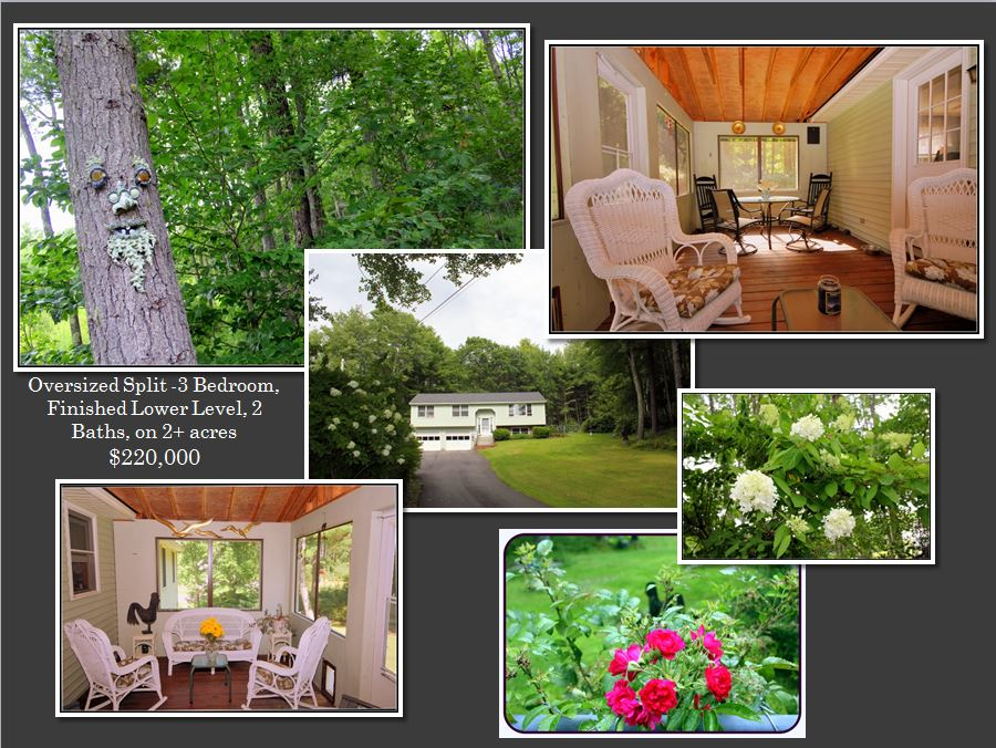Private fenced backyard with character!  Fantastic screen porch to enjoy the surroundings.