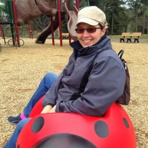 The Ladybug at the Benson's Playground